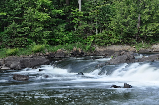 Oxtongue River Rapids and Trail