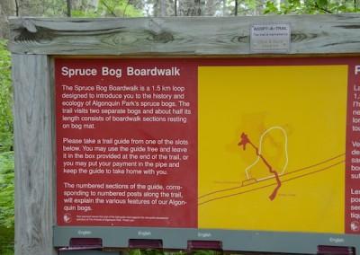 Algonquin Park Trails